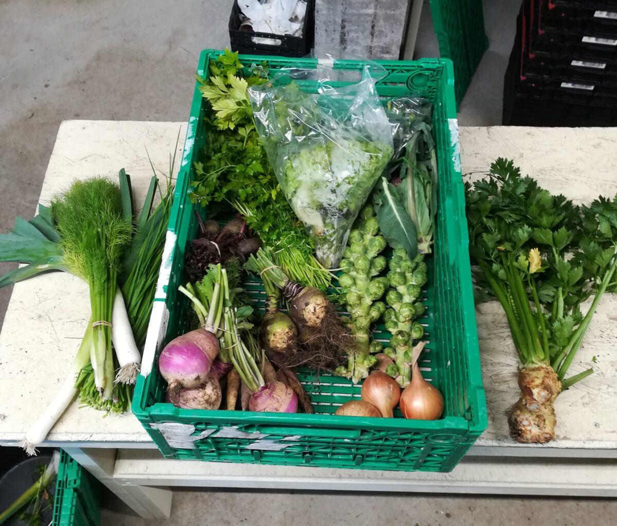 Un exemple de panier qu'on fait (presque) chaque semaine en fonction des légumes dispos